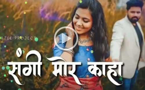 Sangi Tor Maya Julum Laage Wo || Chhattisgarhi Status